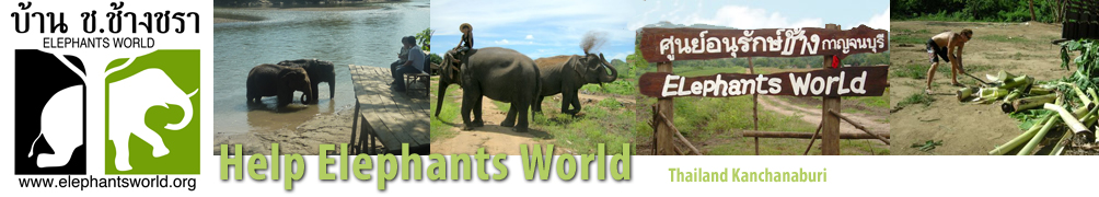 Help Elephants World